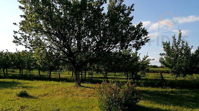 Grundstück, 3657 m2, Verkauf, Erdut