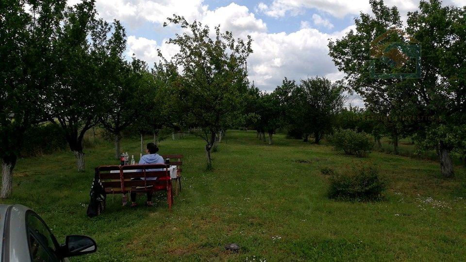 Land, 3657 m2, For Sale, Erdut