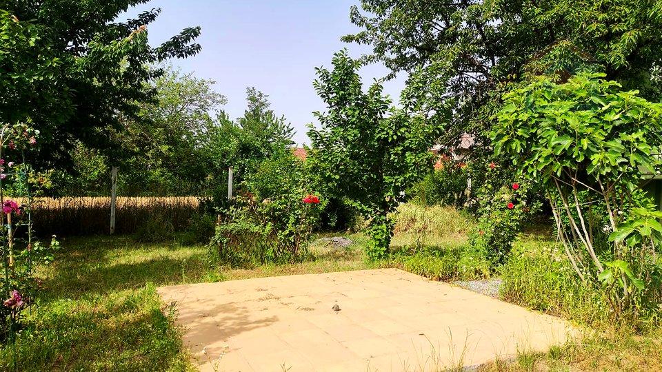 House, 40 m2, For Sale, Zmajevac