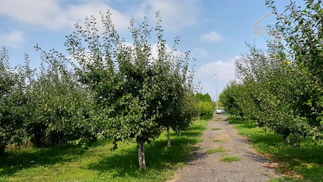 Land, 3437 m2, For Sale, Osijek - Industrijska zona