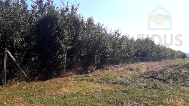 Land, 3 m2, For Sale, Topolje
